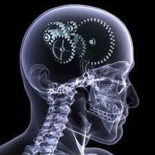 X-raySkull-gearsInside