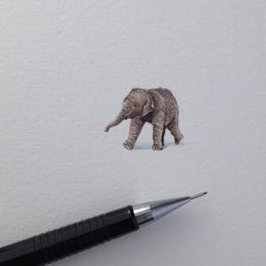 daily-miniature-paintings-brooke-rothshank-4-8a25a4303e705e1b70e20e1c6a95550e